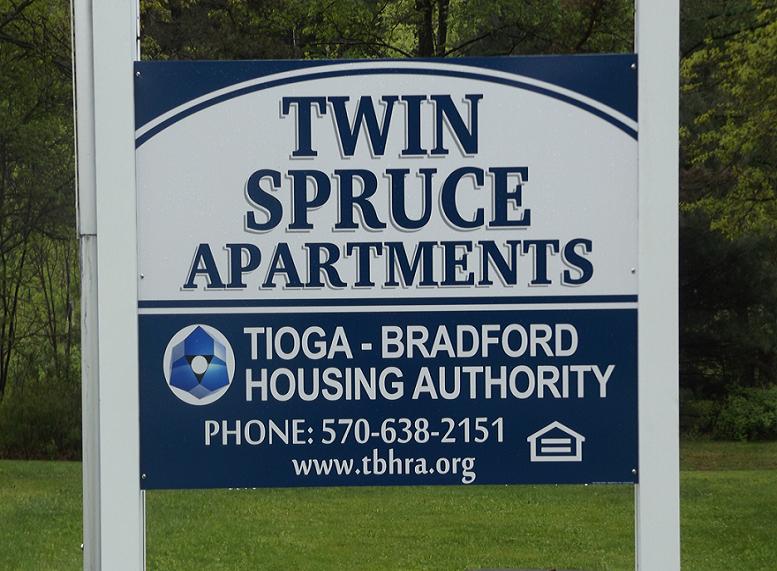 Twin Spruce